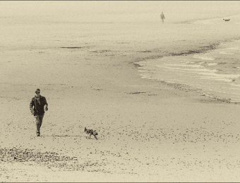 1_walking-the-dogs2
