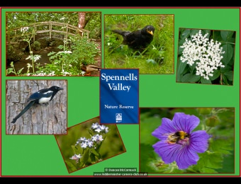 Spennells Valley Nature Reserve