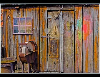 Colourful Decay