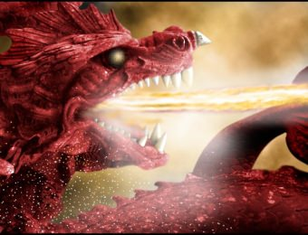 Creative 4 Witley Court Dragon