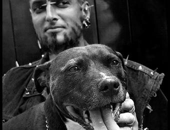 Spike's Dog copy