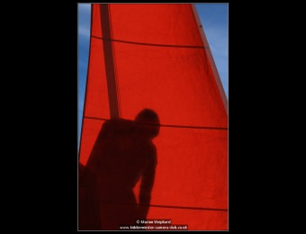 marion-shephard-shadowy-figure-2-copy