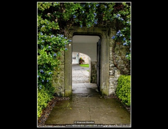 maureen-mundon-8-the-gateway
