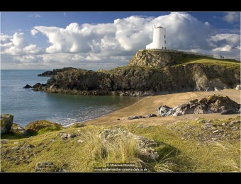 maureen-mundon-walk-to-the-lighthouse
