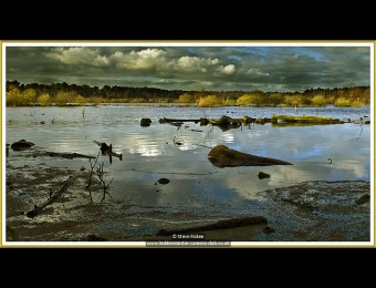 steve-ficken-1-delamere-lake-sf