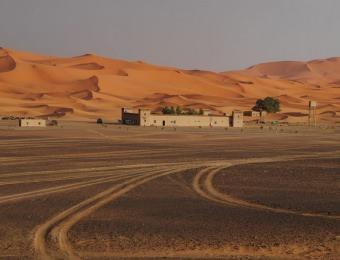 Edge of Sahara