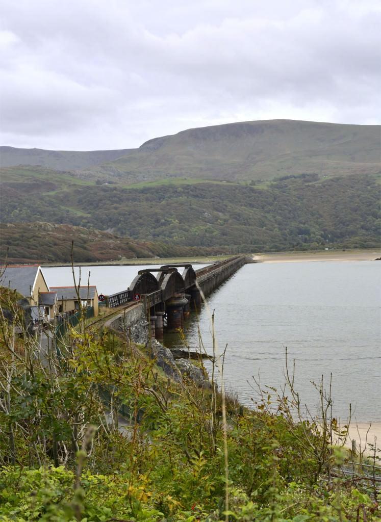 Wales Bob Dixon_edited-1